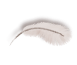 gameart feather